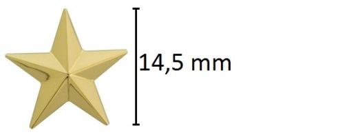 assieraad ster goud ashanger